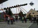 Kirta Loifling 2011_3