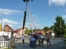 Kirta Loifling 2012_2