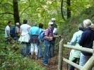 Wandern Freyung Grafenau 2011_5